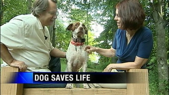 Foster Dog Runs For Help To Save Collapsed Man Life With