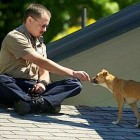 Dog Stranded on Roof Reunited with Owner