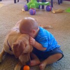 A Boy and His Dog: 2 1/2 Years in Photos
