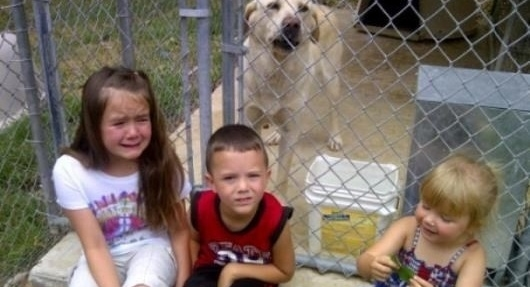 The Sanders children with their boy, Phineas.  Lexi (left) was particularly affected by Mayor Gary Brown's decision to have their dog executed.
