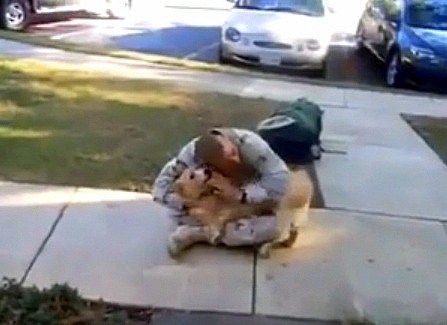 Dog's Exciting Reunion with Soldier