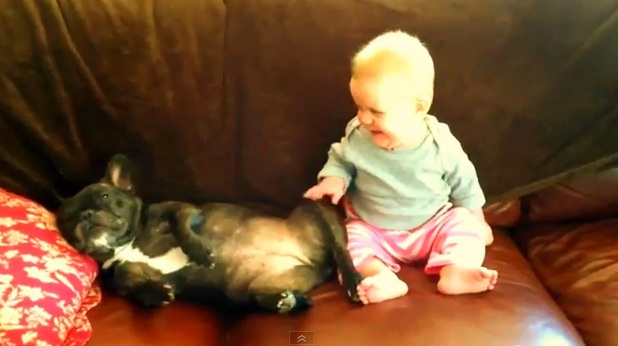 Baby Enthralled by Dog's Snoring
