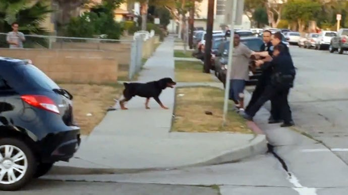 Hawthorne Officers Receiving Death Threats After Dog-Shooting