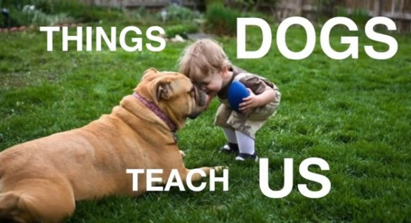 7.8.13 - Things Dogs Teach Us