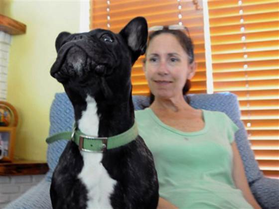 Lenny helps Susan just by being a dog - whether by his relaxing snores, or his willingness to be an arm or head rest.