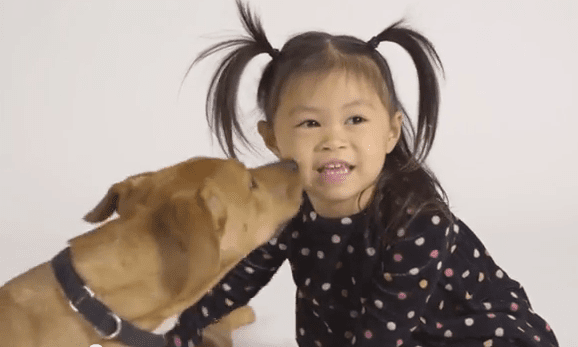 Adorable Toddler, Molly, Explains Why Puppy Mills are Bad