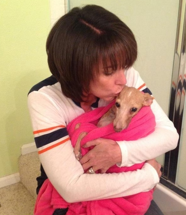 Older Dog Rescued From Puppy Mill Proves It's Never Too Late to Learn to Love
