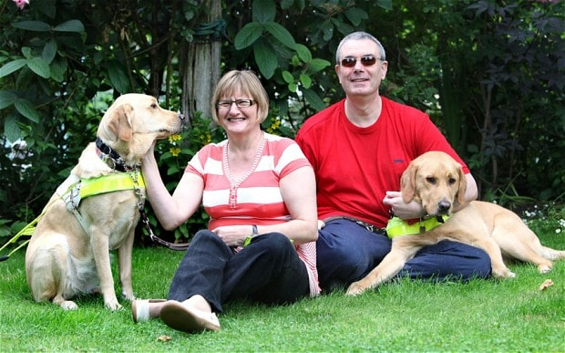 Two Guide Dogs Help Owners Find Love