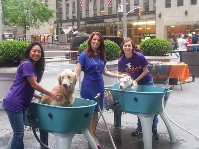 Dogtopia Holding National Wash Your Dog Day to Benefit Veterans