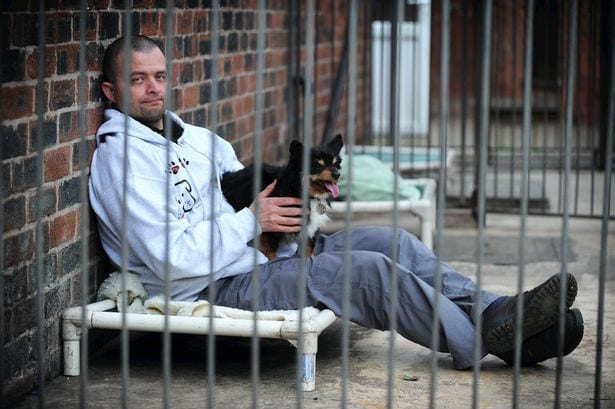 Man to Spend 35 Days in a Kennel to Raise Awareness about Homeless Dogs