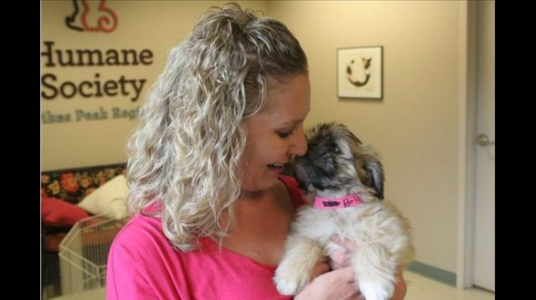 Puppies Rescued From A Trash Can Find Homes