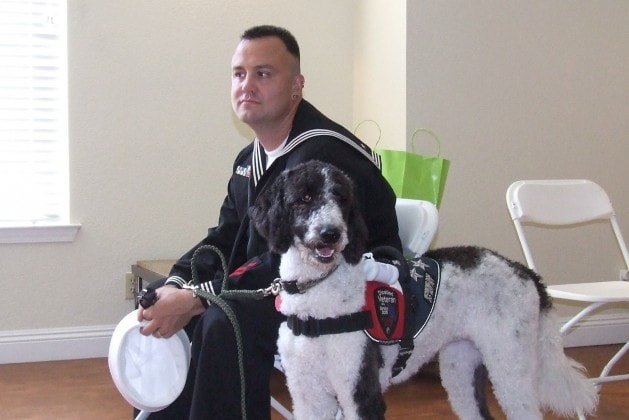 Dogs Help U.S. Veterans with PTSD