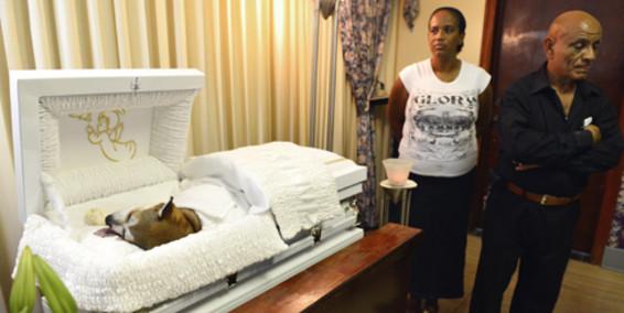 Brownie's funeral service Photo Credit: Primera Hora- El Nuevo Día- GDA