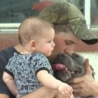 Puppy Missing for Two Months Reunited with Owners