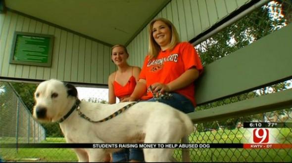8.14.13 - Students Save Tortured Dog