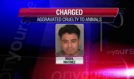 Man Arrested After Neighbor Films Animal Abuse