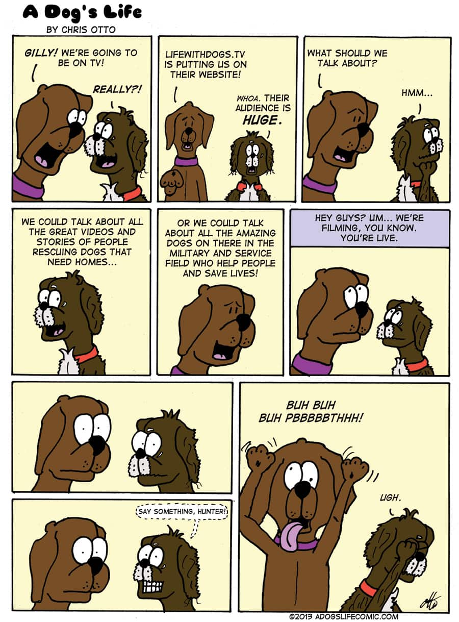 Heartwarming Comics of a Chocolate Lab and His Rescued Friend