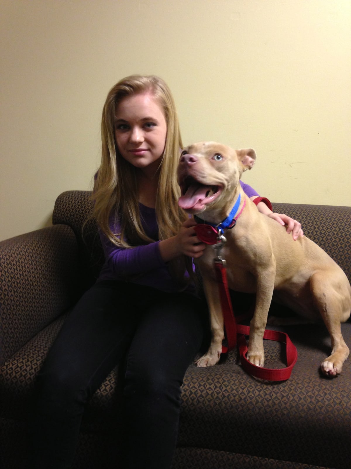 Disney Star Sierra McCormick and Pics for Pets Help Animals Find Homes