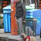 Actor Jeremy Renner's Dog Found after Missing for a Month