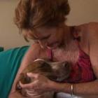 Dog Survives Two Months in Arizona Desert