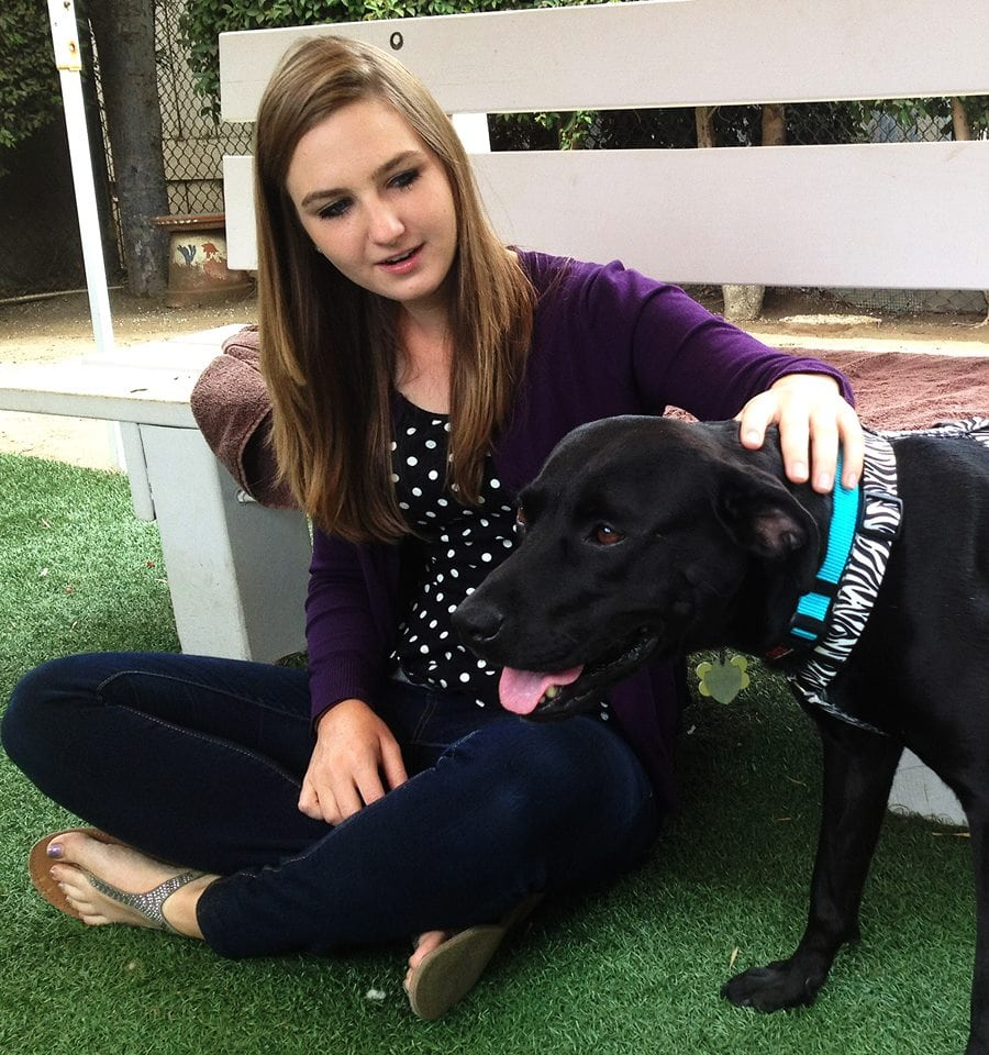 Dog with Terminal Cancer Finds a Home