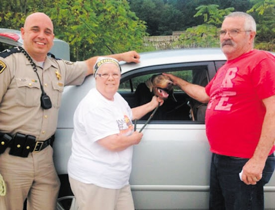Rescued Dog Lost During Transport Is Found Again