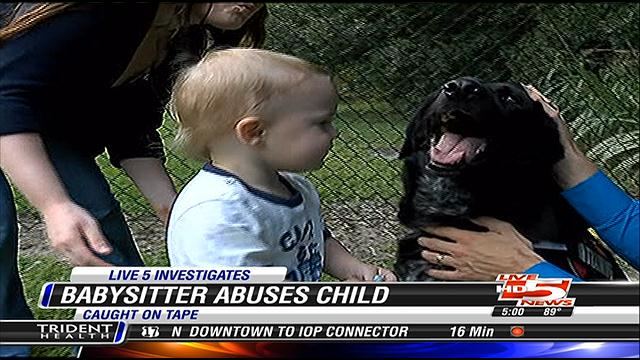 Dog Alerts Parents to Abusive Babysitter
