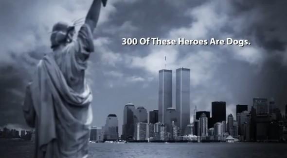 9.11.13 - Hero Dogs of 9.11 4