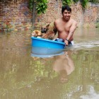 Dog Owners Strive to Keep Pets Safe Through Mexican Flood