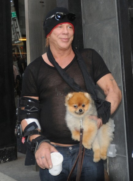 mickey rourke youngmickey rourke 2016, mickey rourke young, mickey rourke 2017, mickey rourke boxing, mickey rourke boxrec, mickey rourke movies, mickey rourke wrestler, mickey rourke harley davidson, mickey rourke films, mickey rourke box, mickey rourke plastic, mickey rourke net worth, mickey rourke sin city, mickey rourke barfly, mickey rourke filmleri, mickey rourke tumblr, mickey rourke wife, mickey rourke instagram official, mickey rourke motorcycle, mickey rourke now