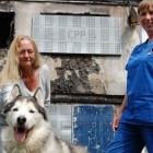 One-Eyed, Epileptic Dog Saves Owner from Fire