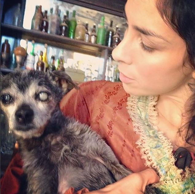 Sarah Silverman Pens Loving Tribute to Her Deceased Dog