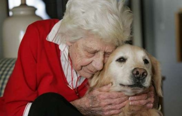 nominate therapy dog to be pet mayor of toms river new With dog caregiver