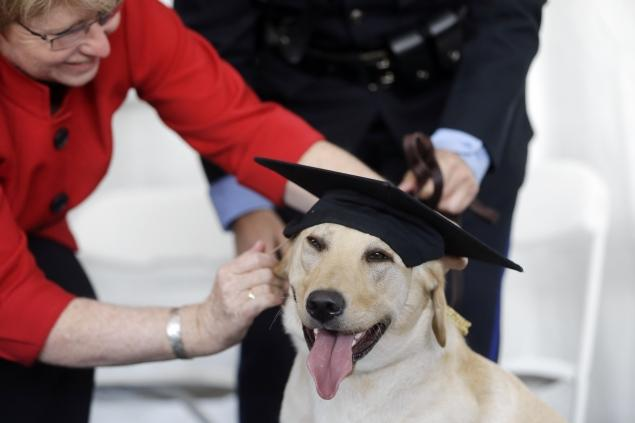 UPenn Working Dog Center Graduates Its First Class
