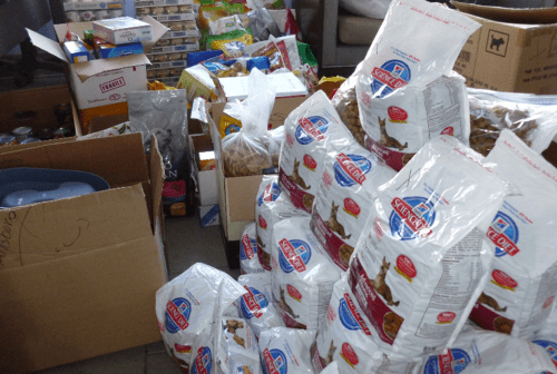 Food, Shelter & Love: A Program That Makes a Difference
