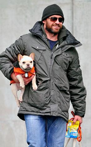 10.26.13 - Celebs and Their Dogs - Hugh Jackman & Peaches