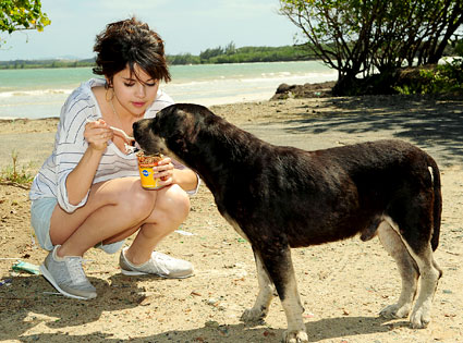 10.26.13 - Celebs and Their Dogs - spoiling strays in Puerto Rico