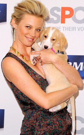 10.26.13 - Celebs and Their Dogs10 - Amy Smart & Maggie - SPCA event