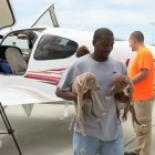 Pilots N Paws Rescues & Transports 400 Kill-Shelter Dogs
