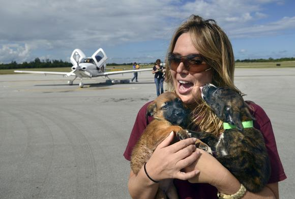 Martine Pate carries two of the many rescued puppies that landed in Florida.
