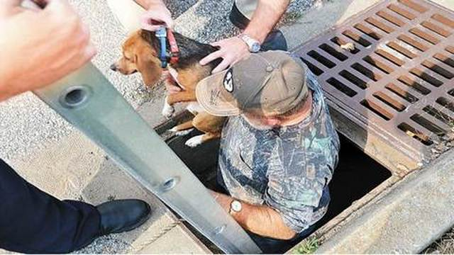 Firefighters Rescue Dogs Trapped in Drain Pipe