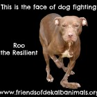 Roo – From Life in Hell to Heaven on Earth