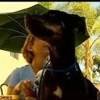Rebecca Stevens shows Grace some affection. Photo Credit: CBS 8 News