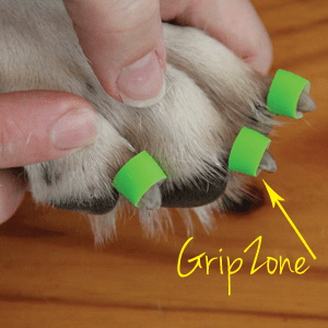 Buzby Toegrips Stopping Dogs From Sliding Floors