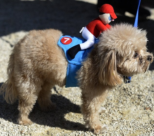 23rd Annual Tompkins Square Halloween Dog Parade