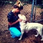 Craigslist Ad Helps Save Abused Dog