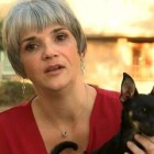 Woman Rescues Chihuahua from Busy Road