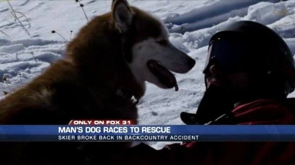 Man's Dog Saves His Life After Skiing Accident