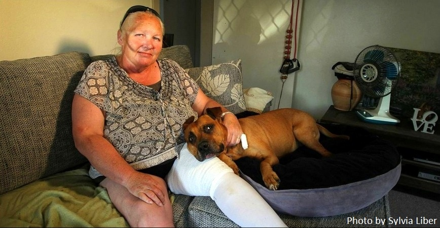 Pit Bull Saves Owner from Dog Attack