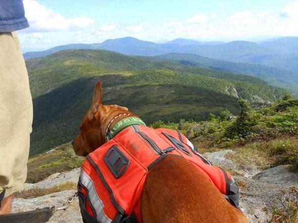 11.21.13 - Appalachian Hike6